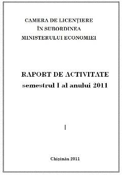 raport 2.jpg